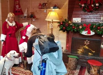 Οι γιορτές των Χριστουγέννων και οι ισχυρές επιδράσεις των σημαντικών απωλειών στον ψυχικό κόσμο των ανηλίκων
