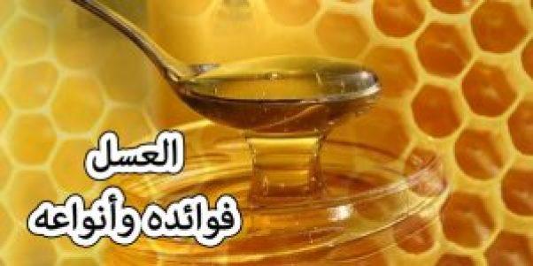 العسل فوائدة وأنواعه