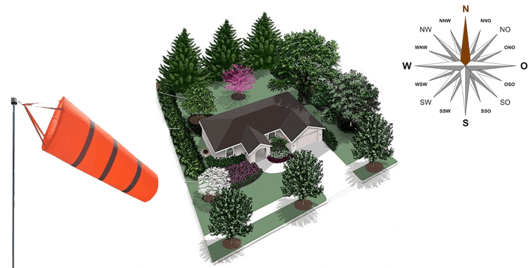 زراعة الأشجار المثمرة في المنزل