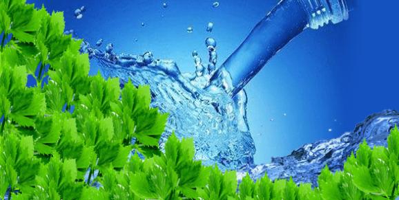 طريقة  التخلص من الماء الزائد في الجسم