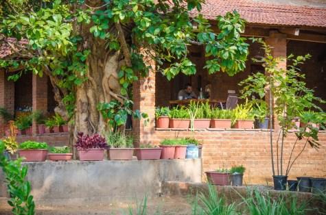 Salban_Madhya_Pradesh_Meghana_Kulkarni_ArchitectDSC_0288