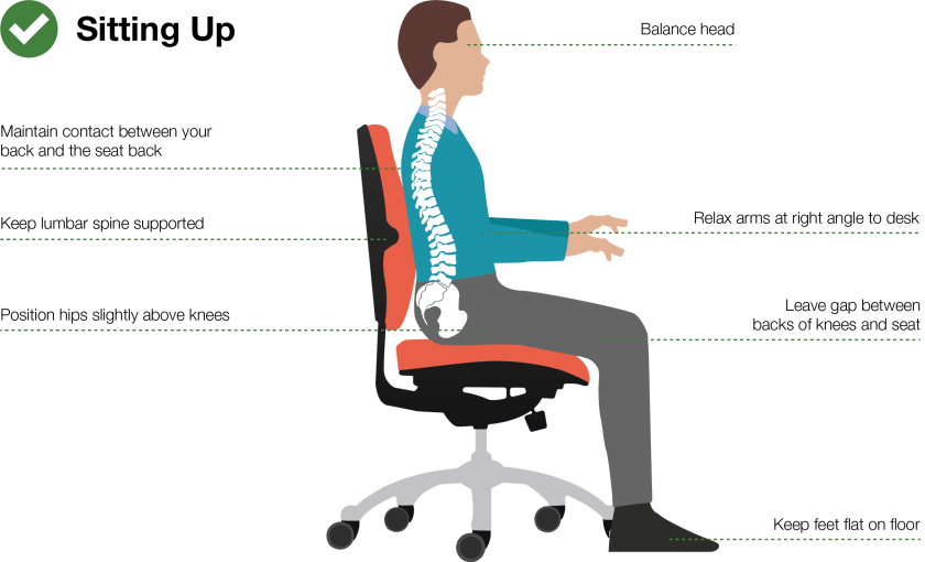 good-posture sitting position with Proper Lumbar Support Placement