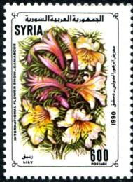 Postzegel lili