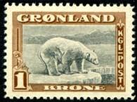 ijsbeer-1-kr-854-195p.jpg