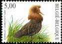 500-vogels-2002-919-125p.jpg