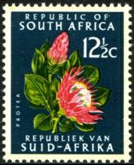 125-c-1971-085.jpg