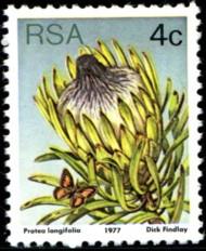 4-c-1977-089.jpg