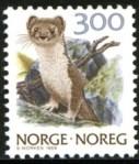 noreg-norge-717.jpg