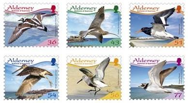 birds-alderney