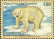 17 ijsbeer Verenigde Naties Genevè 1997
