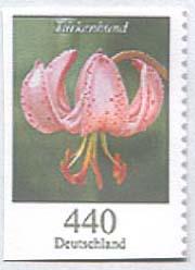 D 440