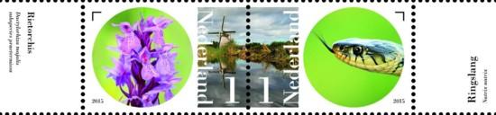 Vel Naardermeer - aan de oever