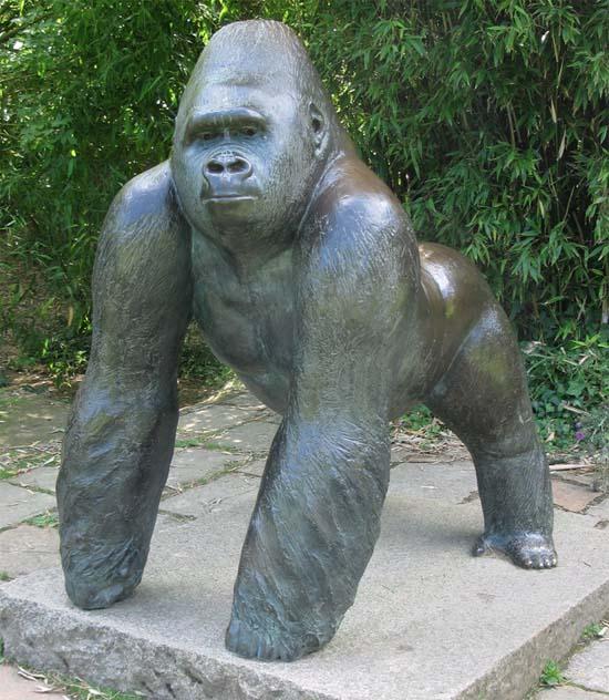 Er werd speciaal voor Jambo de gorilla een standbeeld opgericght dat te bewonderen is in Durrell Wildlife Park