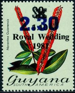 Guyana Mi 983