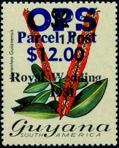 Guyana Mi Dienst 3
