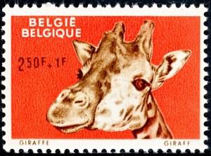 belgie-1185