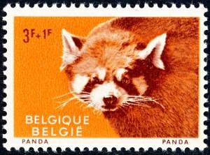 belgie-1186