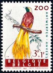 belgie-1220