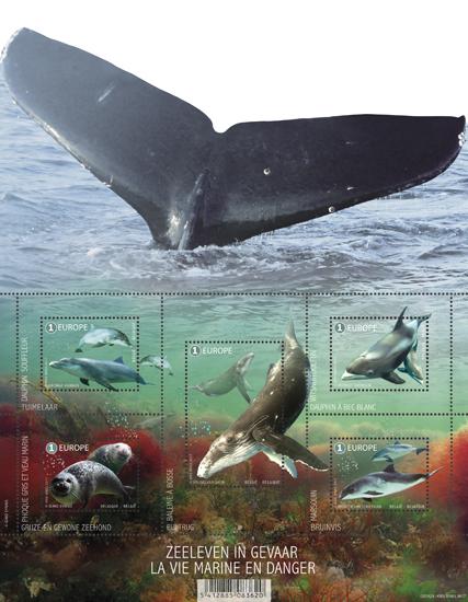 Zeeleven in gevaar Bedreigde zoogdieren uit de Noordzee