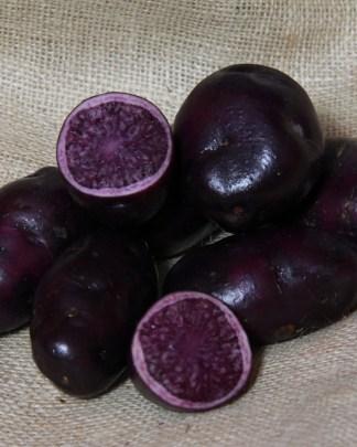 Salad Blue Seed Potato