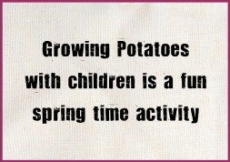 Grow your own potatoes with children