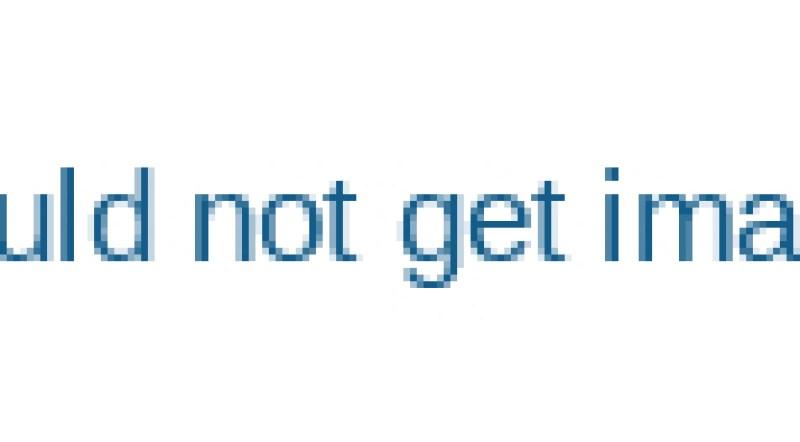 Automatic-Potato-Chips-Cutting-Machine-Potato-Sticks-Cutting-Machine