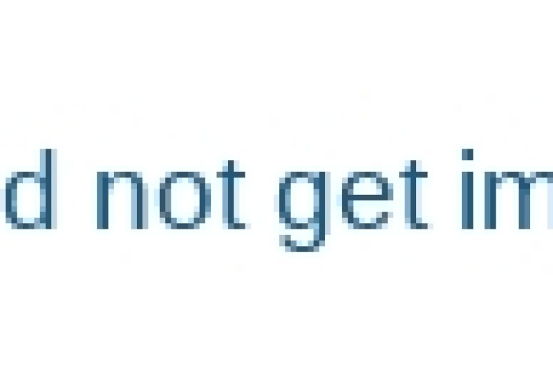 potato-sticks-blanching-machine