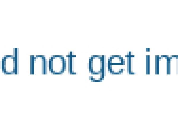 Potato-Selecting-Conveyor