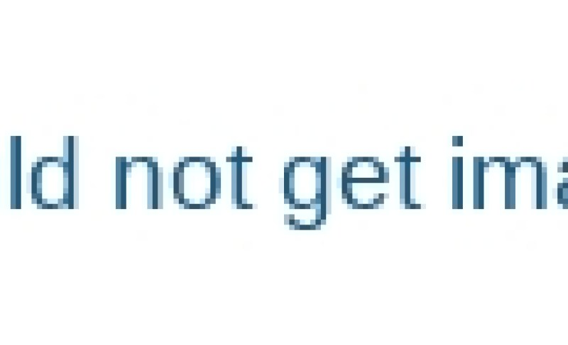 Frozen-French-Fries-Making-Machine-Manufacture-Factory-Visit-Romiter-Machinery