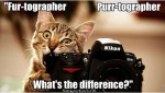 Call out to those who love photography!
