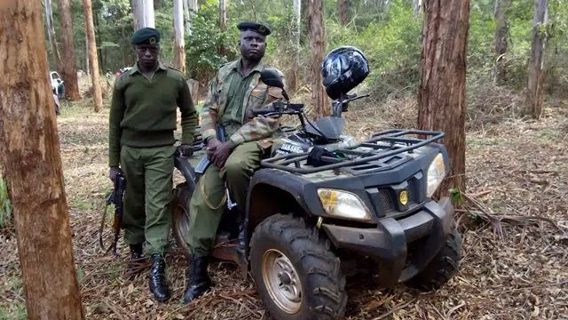 The Forest Rangers who protect our forests.
