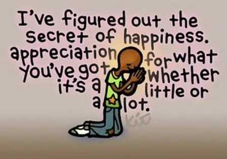 Appreciation is good for heart and mind. Image from https://inspirechange1.wordpress.com/2011/11/23/appreciate-gallery/
