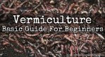Vermiculture: The Agribusiness Venture That Doubles Up As A Waste Management System