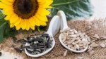 Health: 8 Great Reasons Why You Should Start Eating Sunflower Seeds
