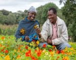 Agriculture: How Safaricom's Connected Farmers Alliance Is Transforming The Lives Of Kenyan Small-Scale Farmers