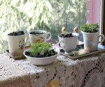 8 Kitchen Tools That Can Be Re-Purposed For Gardening