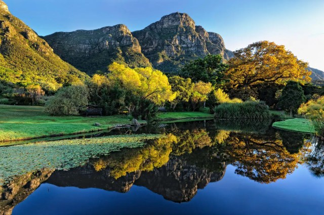 Kirstenbosch Gardens - Cape Town - Outdoors