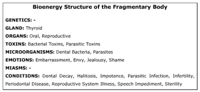 Figure 3: Bioenergy Structure of the Fragmentary Body. This chart shows the basic structure of the problematic bioenergy ecosystem known as the Fragmentary Body.