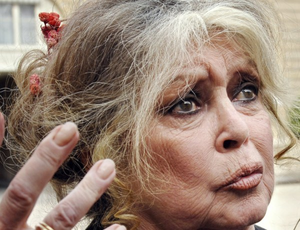 Brigitte Bardot s'en prend à Catherine Deneuve et Manuel Valls ! Découvrez pourquoi !