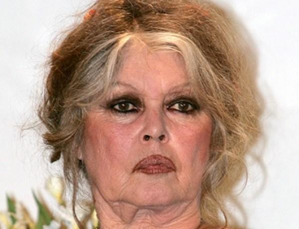 Brigitte Bardot furieuse contre le tueur de Cecil le lion
