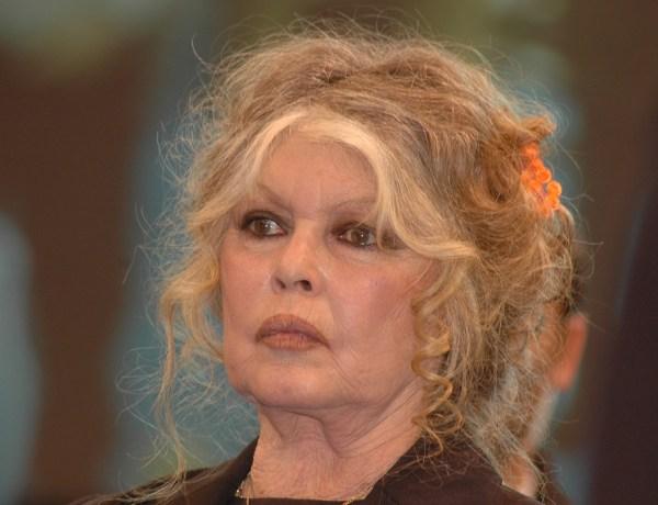 #SS10 : Brigitte Bardot en colère après l'émission