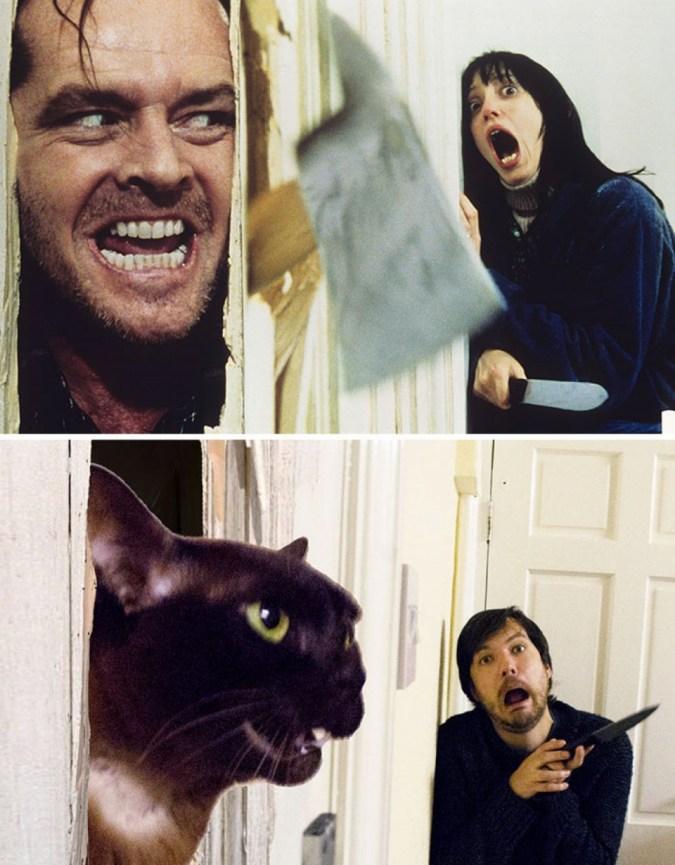 Il utilise son chat pour reproduire des scènes mythiques du cinéma