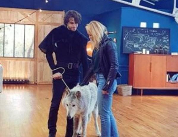 Danse avec les stars: Face aux pressions, TF1 annule la diffusion d'une séquence avec un loup