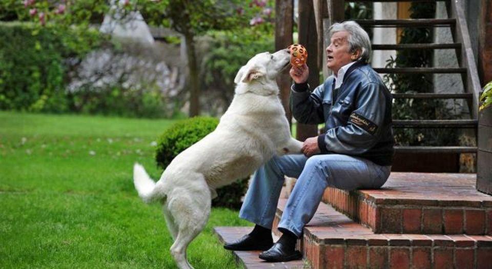 Alain Delon piquera son chien pour qu'il ne lui survive pas