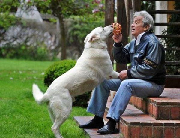 Alain Delon veut mourir avec son chien !