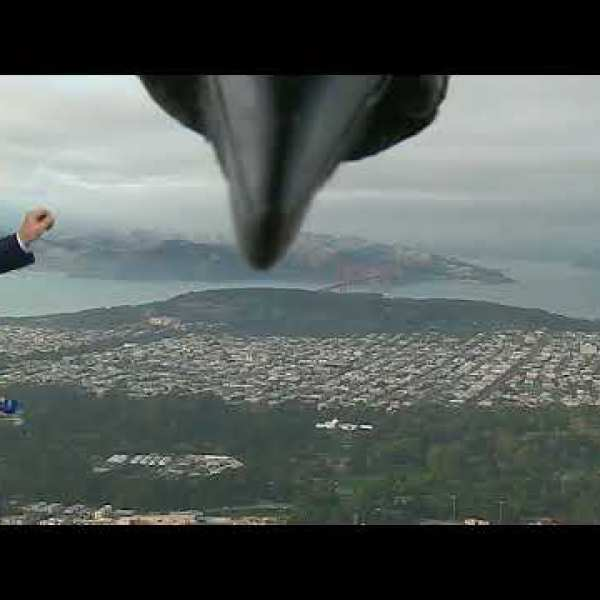 Quand un corbeau perturbe un bulletin météo !