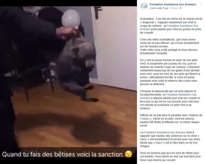 Il se filme en train de maltraiter son chiot, la police le retrouve !