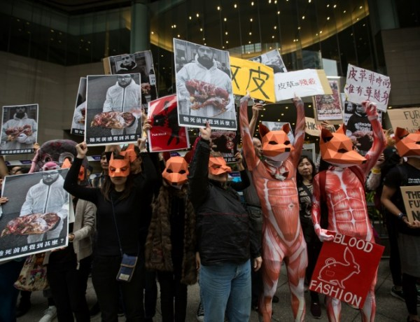 Donatella Versace bannit la fourrure animale pour la marque