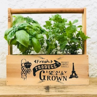 Herb Sampler Carry Tote Plant Gift