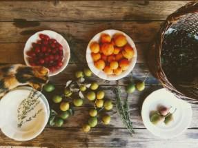 Co všechno se dá nyní v krajině najít? Myrobalán, višně (a pozdní třešně), meruňky a nejrannější hrušky.